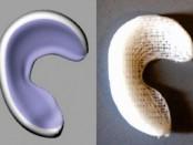 мениск колена напечатан на 3D-принтере